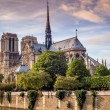 Stock Photo: Notre Dame in Paris