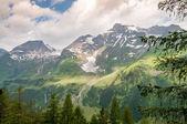 Naturaleza en austria — Foto de Stock
