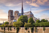 Notre Dame in Paris — Stock Photo