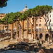Area Sacra Largo di Torre Argentina — Stock Photo