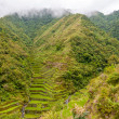 Terraced Fields — Stock Photo #27444885