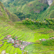 Terraced Fields in Banaue — Stock Photo