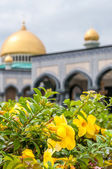 Flowers with Mosque — Stock Photo