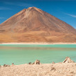 Laguna Verde — Stock Photo