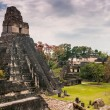 Stock Photo: Tikal Main Plaza
