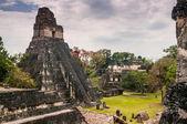Tikal Main Plaza — Stock Photo