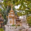 Stock Photo: Small Stupas in Vientiane City