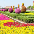 Tiananmen Square Garden — Stock Photo #32568629