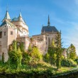 Panorama View at The Bojnice Castle — Stock Photo #34349837