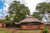 Painted houses in Omo NP — Stock Photo