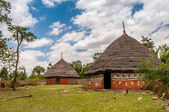Homes in the Ethiopian countryside — Stock Photo