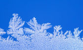 Natural frostwork — Stock Photo