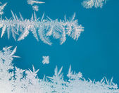 Frozen window pattern — Stock Photo