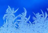 Hoarfrost Christmas ornament — Stock Photo