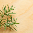 Rosemary twig on chopping board — Stock Photo