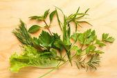 Scented seasoning salad mix — Stock Photo