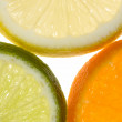 Macro of orange, lemon and lime slices — Stock Photo