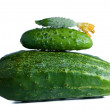 Cucumbers composition — Stock Photo