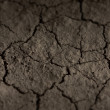 Eroded soil texture — Stock Photo