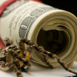 Tarantuland dollars roll - savings protection concept — Stock Photo #34414787