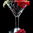 Black and red currant — Stock Photo #35176757