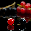 Red and black currant — Stock Photo #35177741