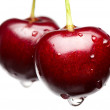 Macro of red cherry — Stock Photo