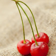 Stock Photo: Red cherry on hessian