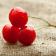 Three cherry over baging — Stock Photo