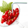 Juicy red currant — Stock Photo #35178229