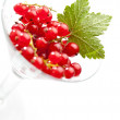 Currants and leaf in wine glass — Stock Photo #35178285