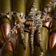 Spider over military munitions — Stock Photo