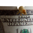 Stock Photo: Money eaten by worm - recession concept