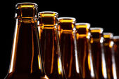 Beer bottles on black background — Stock Photo