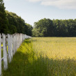 Old wooden stockade — Stock Photo