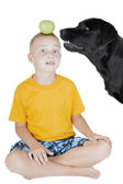 Dog steals an Apple on his head boy — Stock Photo