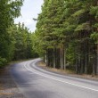Stock Photo: Paved road in woods