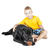 Boy with a dog on a white background — Stock Photo