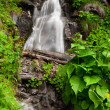 Waterfall — Stock fotografie
