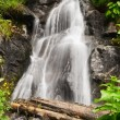 Waterfall — Stock Photo #29573841