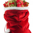 Stock Photo: Santa's sack