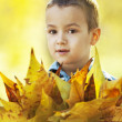 Little boy with yellow leaves — Stock Photo