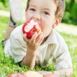 Boy eating a red apple — ストック写真
