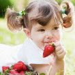 Strawberry time — Stock Photo