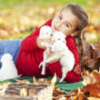 Girl playing with her puppies — Stock Photo