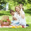 Family on a picnic — Stock fotografie