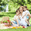 Fun on a picnic — Stock Photo