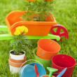 Garden tools — Stock Photo #30440223
