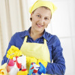 Young woman with house cleaning tools and supplies — Stock Photo #31117741