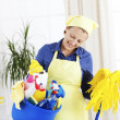 Cheerful woman holding cleaning equipment — Stock Photo #31117765
